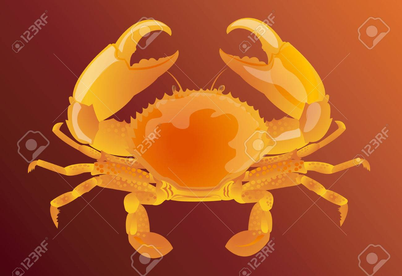Crab Stock Vector - 1640380