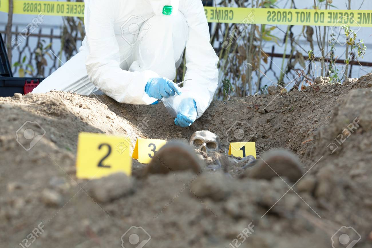 Crime Scene Forensic Science Specialist At Work Stock Photo Picture And Royalty Free Image Image 113433013