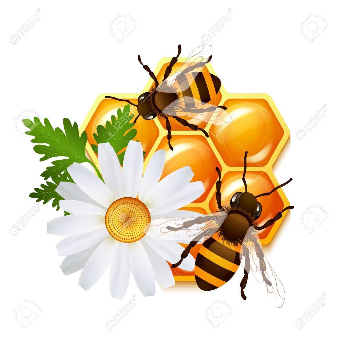 [Jeu] Association d'images - Page 20 27595377-D-coratifs-abeilles-en-nid-d-abeille-et-la-fleur-de-camomille-doux-vecteur-d-embl-me-illustration-Banque-d'images