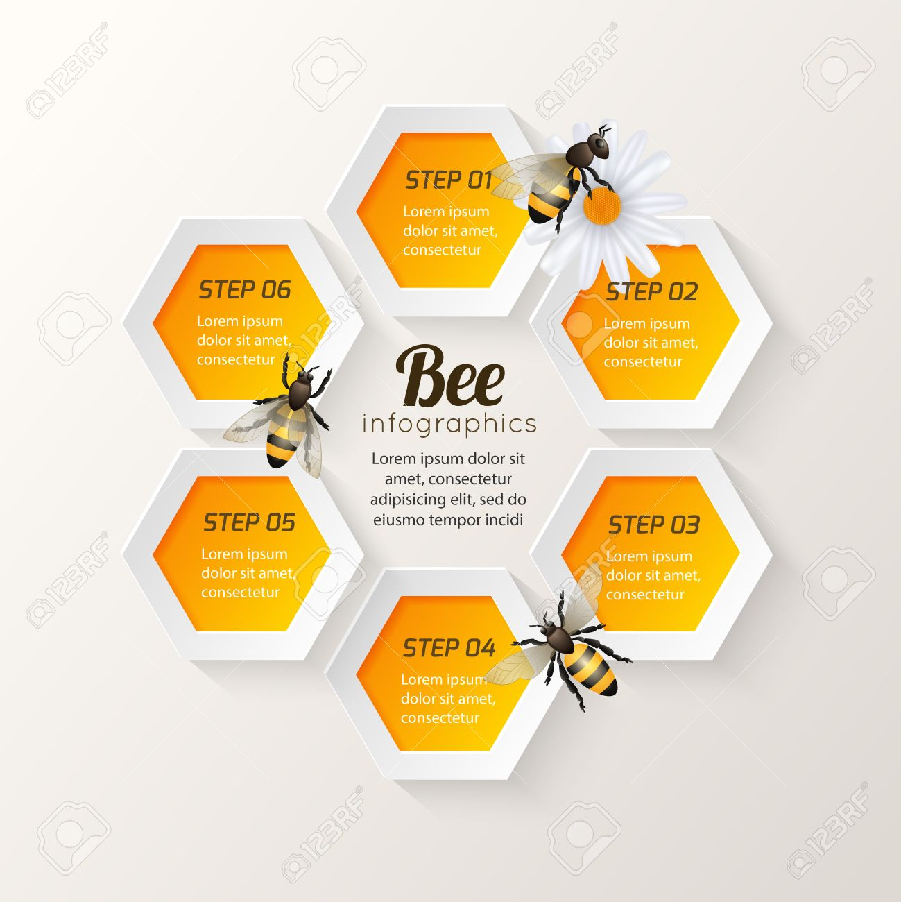 Honey bee on daisy and comb background hexagon steps infographic honey bee on daisy and comb background hexagon steps infographic vector illustration stock vector 28799303 ccuart Images