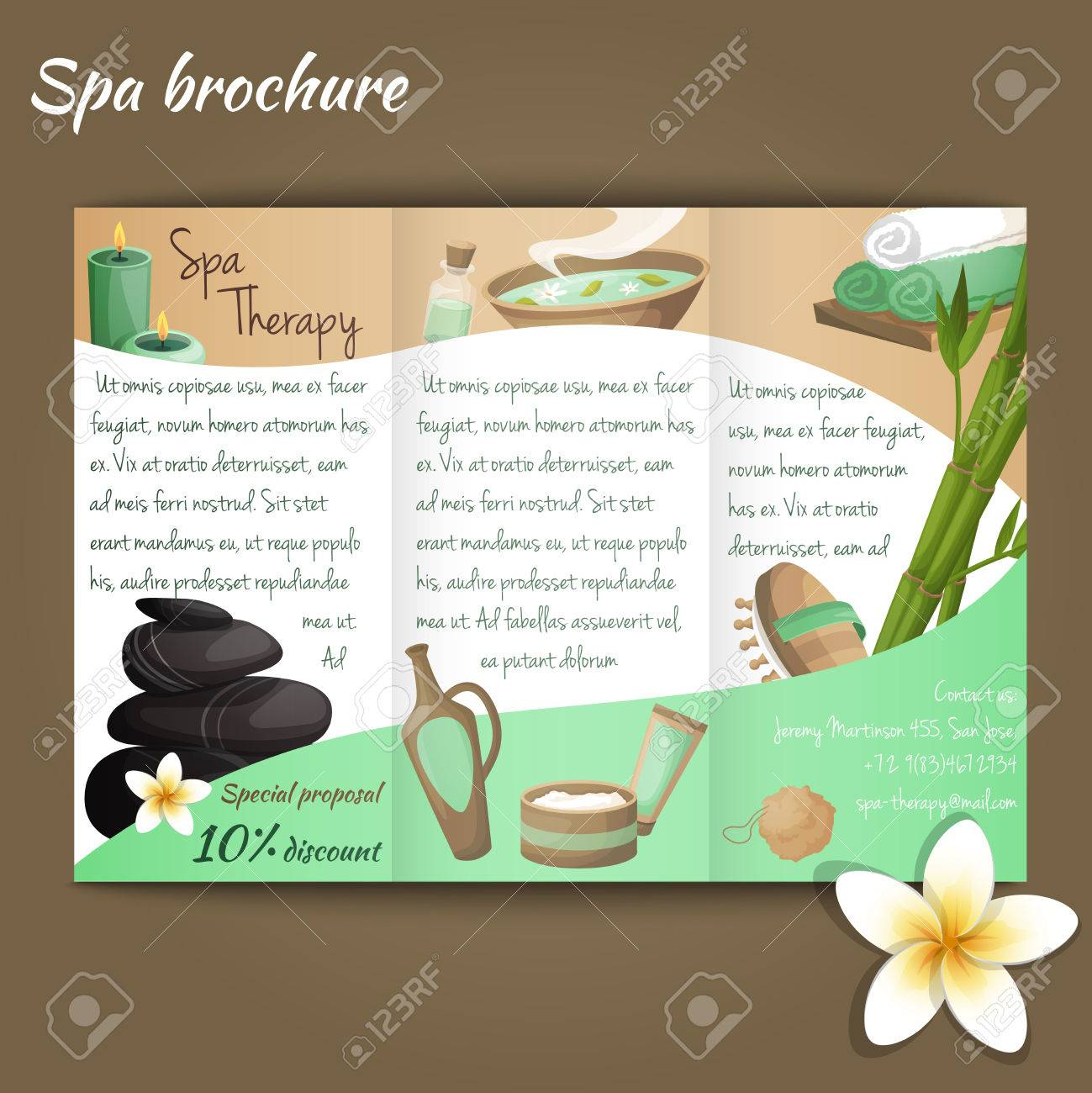 Spa Salon Discount Brochure With Beauty And Health Products Vector ...