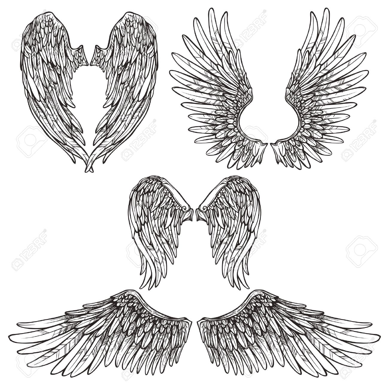 3aabc3481 Angel or bird wings abstract sketch set isolated vector illustration Stock  Vector - 41896459