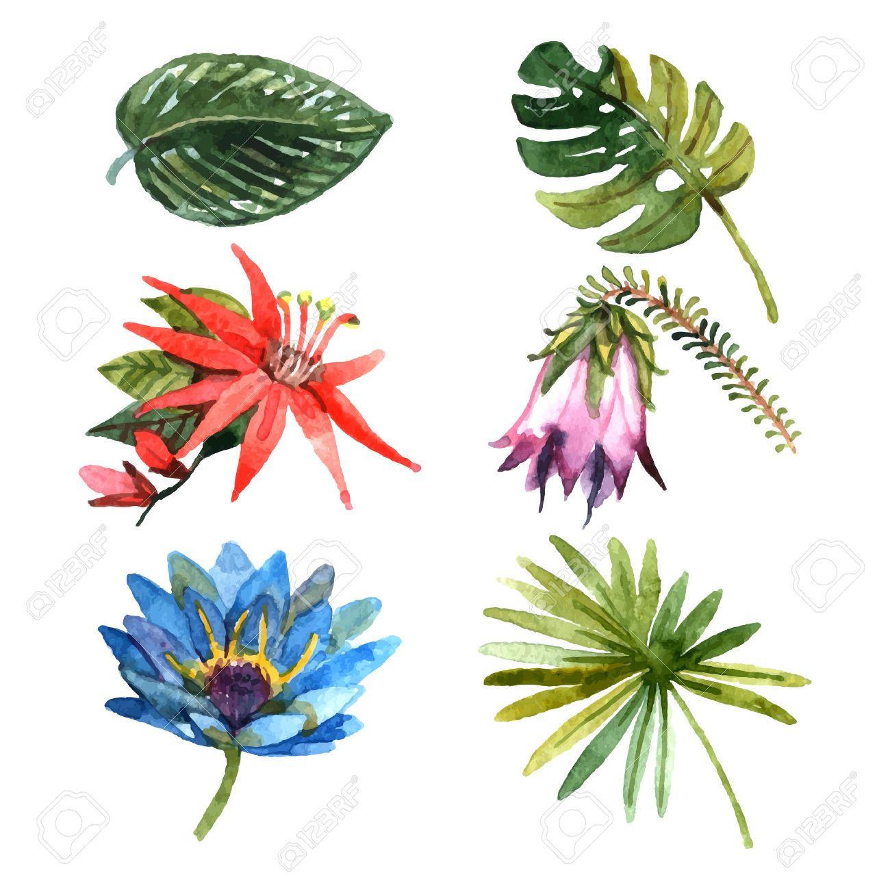 Tropische Pflanzen Im Garten ? Reimplica.info Garten Ideen Tropisch Exotisch Bilder