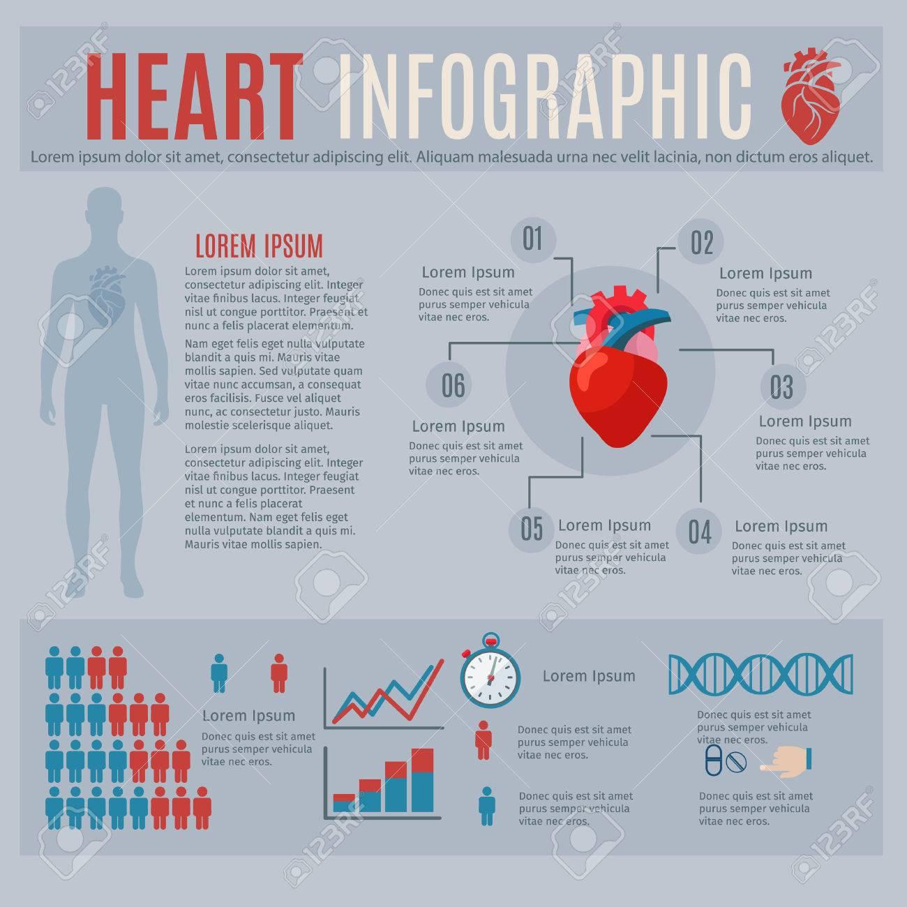 Das Menschliche Herz Infografiken Mit Körpersilhouette Und Diagramme ...