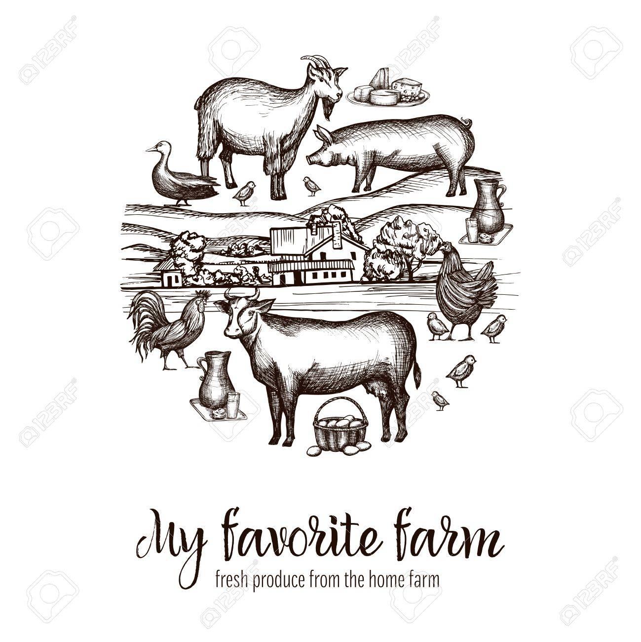 手描き家畜動物食品と背景ベクトル イラストを村の農民市場ポスター
