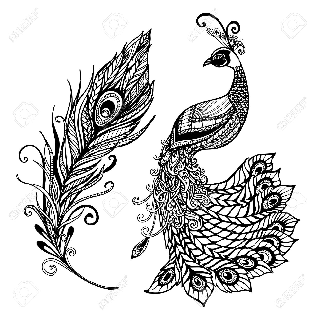 decorative stylized peacock bird feather art deco design template for wall frames doodle black abstract vector