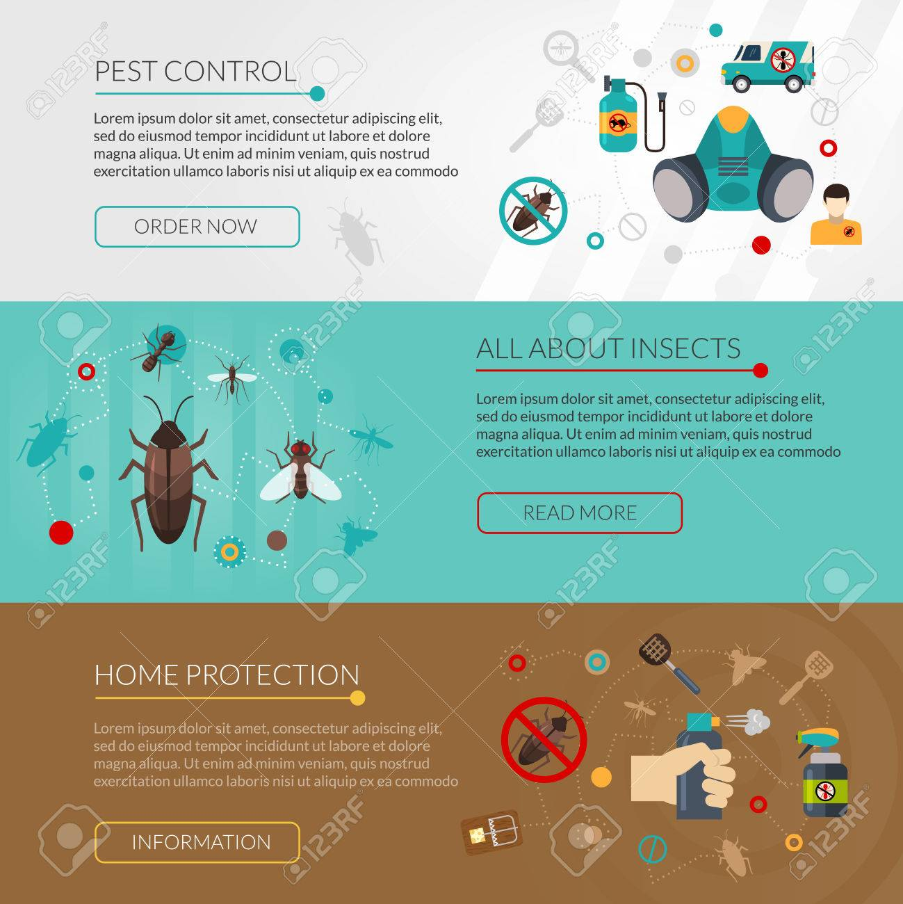 Interactive website for information about insects pest control and extermination 3 flat horizontal banners set isolated vector illustration - 50703655
