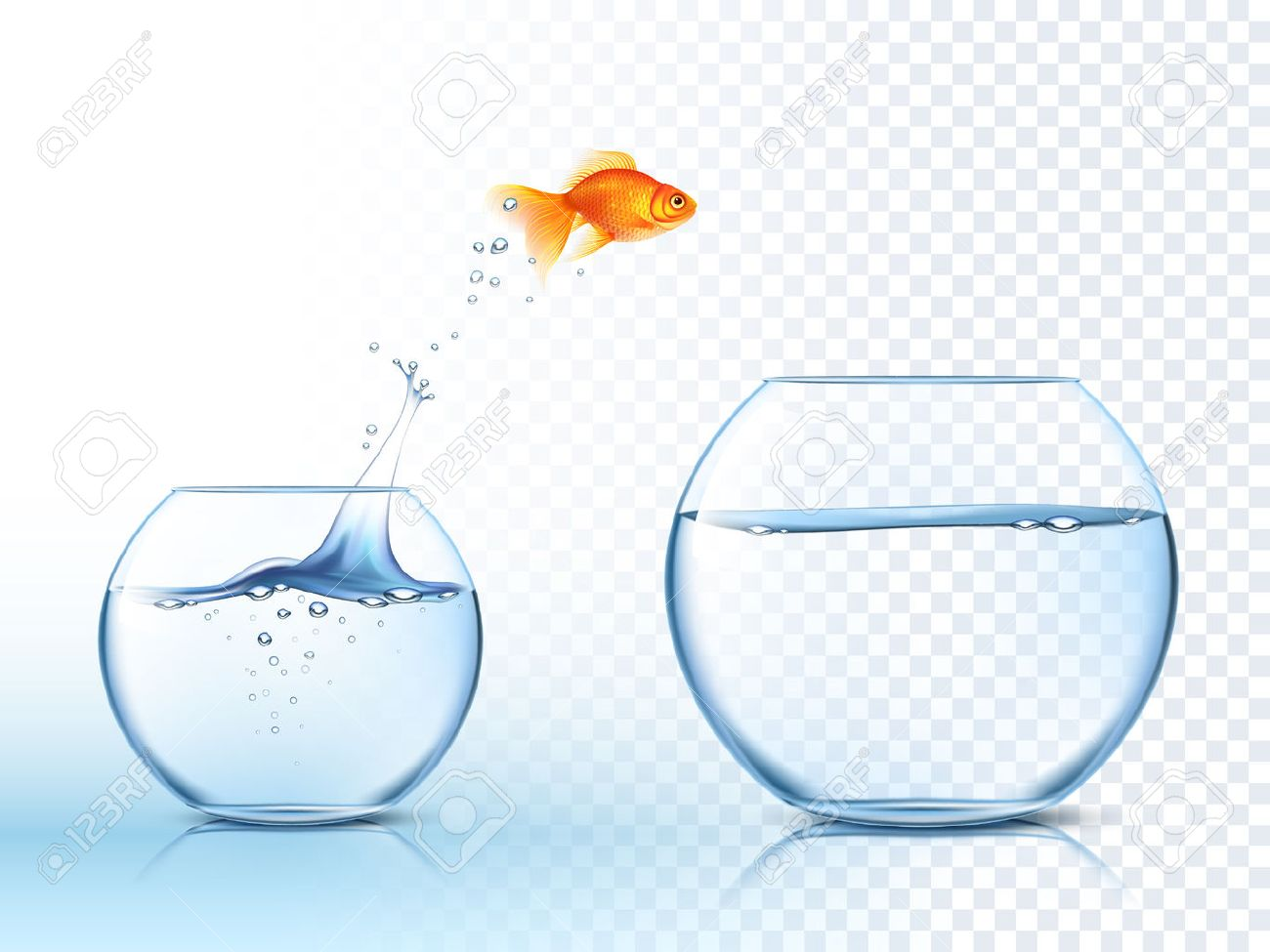 Goldfish jumping out one fishbowl to another aquarium with clear water against light checkered background poster vector illustration - 51757438
