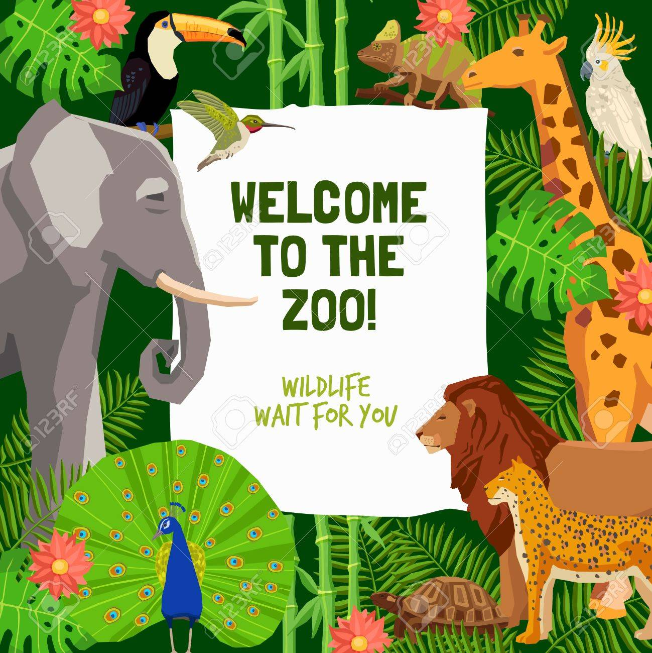 Colorful poster with tropical animals and invitation to visit zoo flat vector illustration - 53875433
