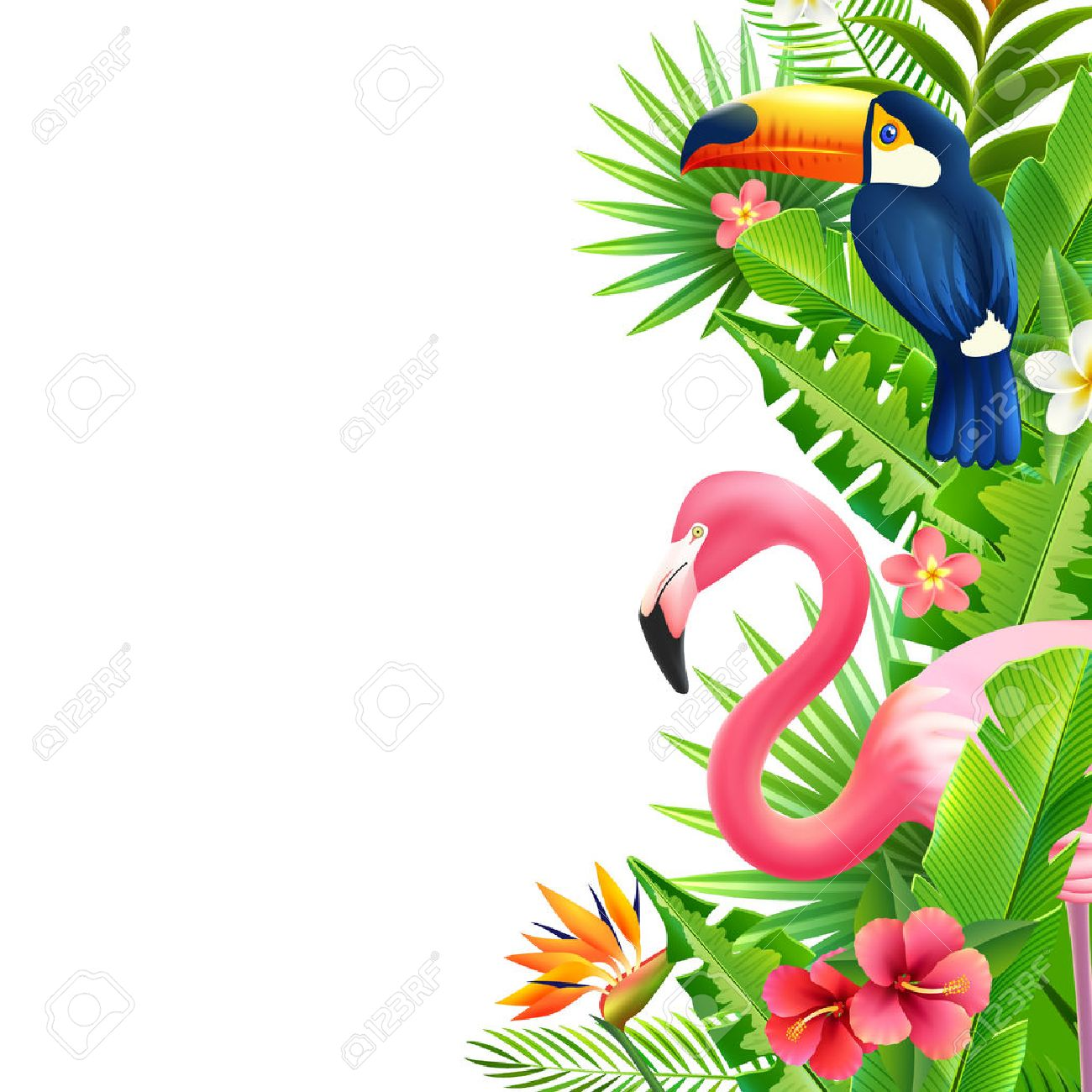 Opulent rainforest foliage vertical border with pink flamingo toucan and bird of paradise flower colorful vector illustration - 56989292