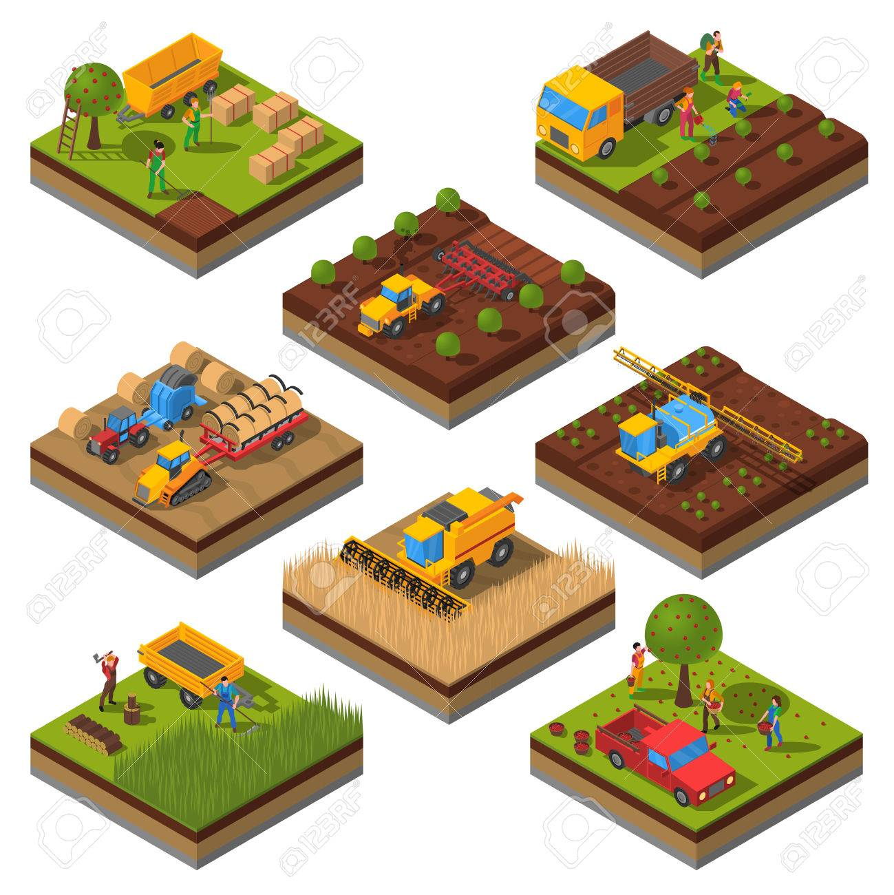 Isometric set with isolated plates of fields and agricultural machines harvesting and people cropping vector illustration - 56989738