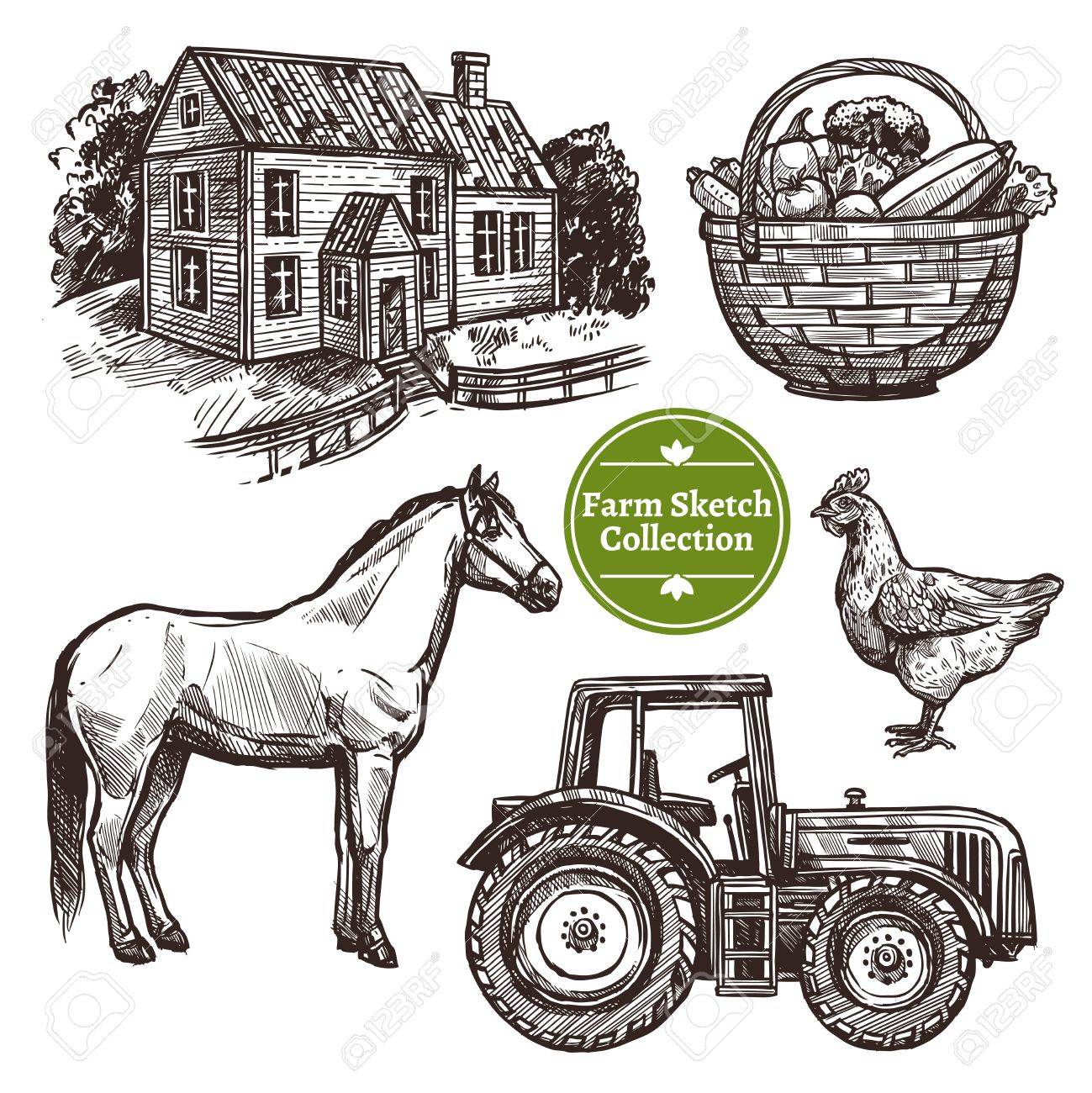 Black And White Farm Hand Drawn Sketch Set With Horse Hen Farmhouse Tractor Basket