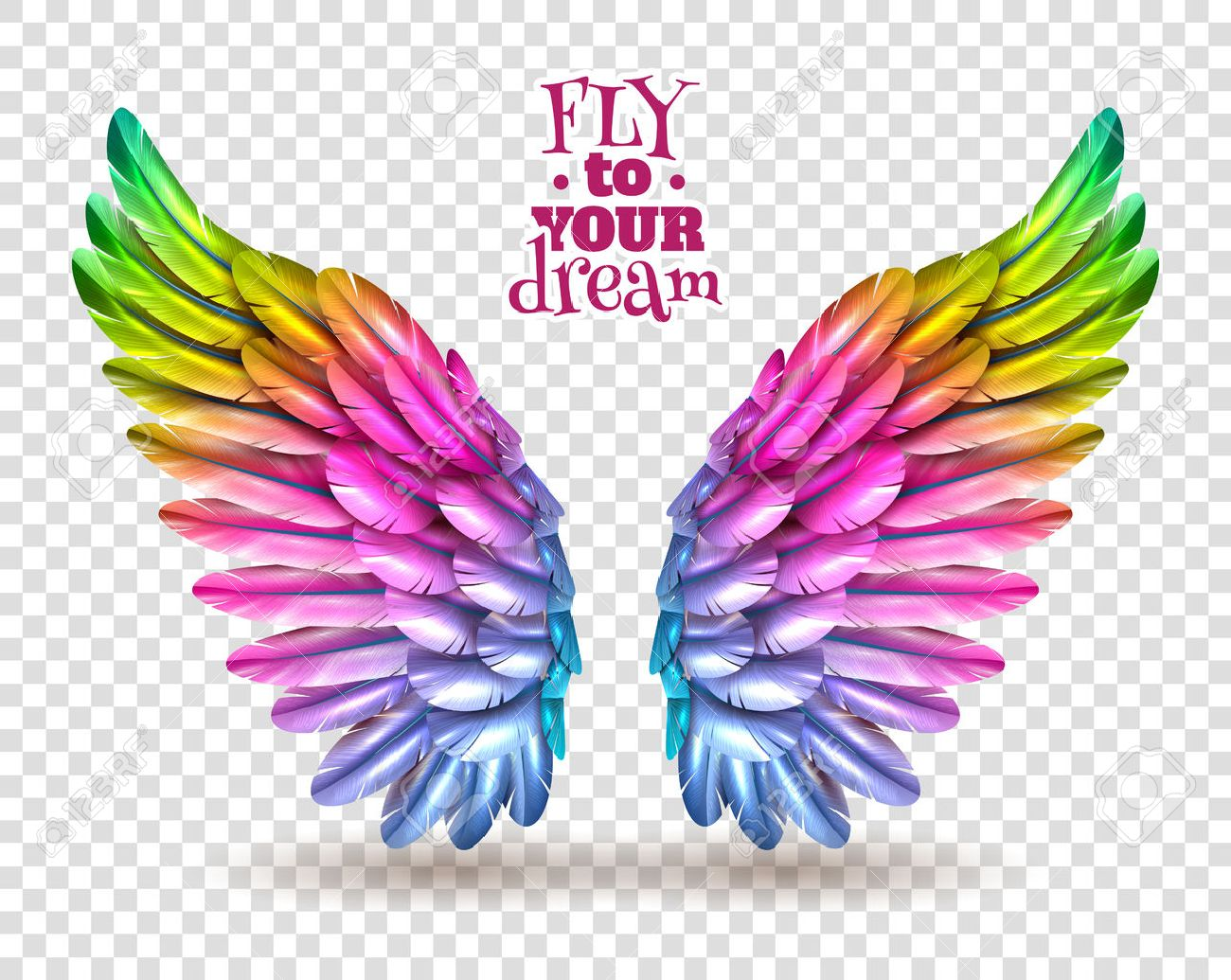 Pair of colorful bird wings set isolated on transparent background with shadow flat vector illustration Stock Vector - 60299429