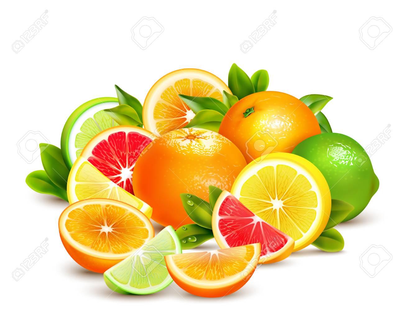 Citrus fruit whole halves and quarters colorful composition with lime lemon grapefruit and oranges realistic vector illustration - 70183366