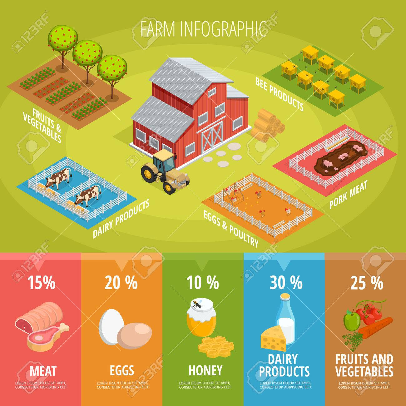 Farm food isometric infographics with house tractor animals vegetables fruits and healthy organic products vector illustration Stock Illustration - 71719432