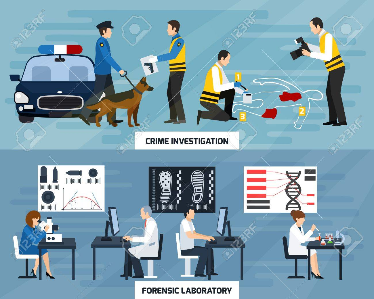Crime investigation flat horizontal banners with police experts and forensic laboratory on blue background isolated vector illustration - 74749366