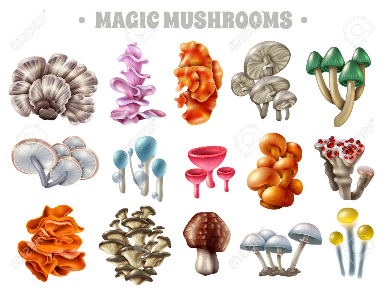 Set Of Magic Mushrooms Of Various Shape And Color With Bubbles