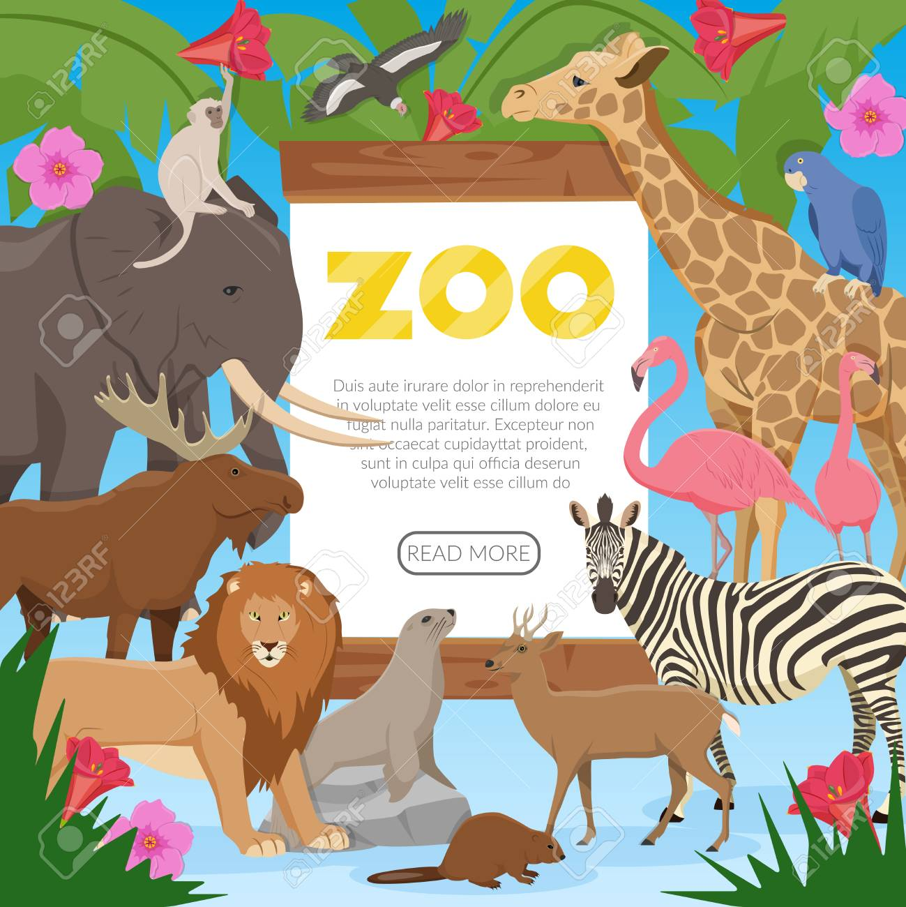 zoo poster with cartoon collection of exotic wild animals