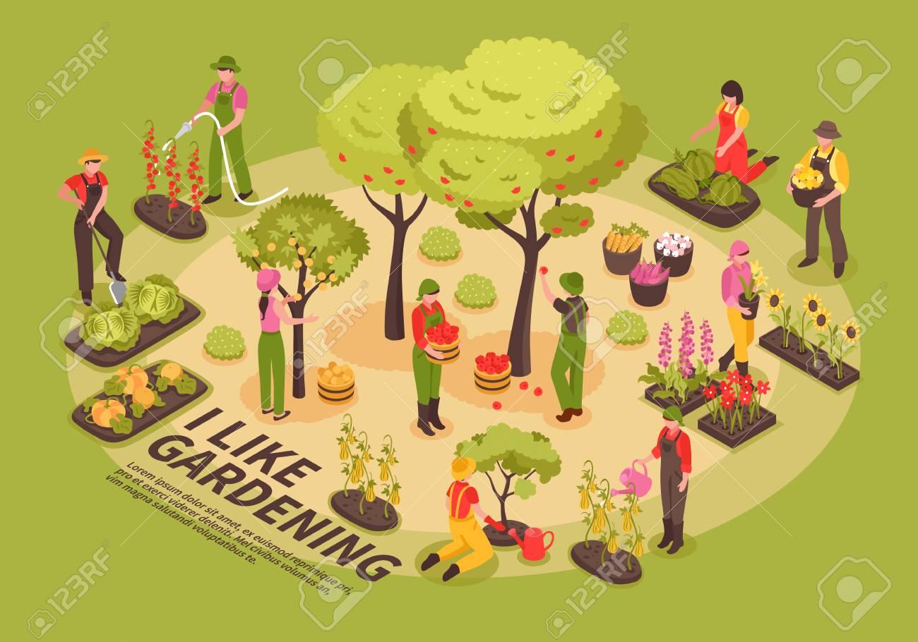 100719016-gardening-infographic-elements