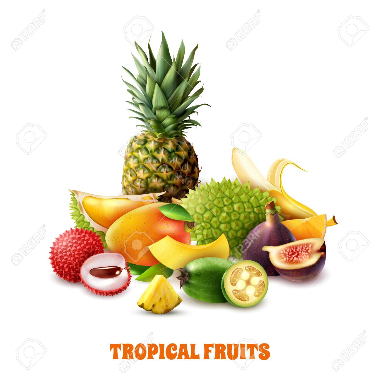 Composition from colorful exotic tropical fruits on white background 3d vector illustration - 100644310