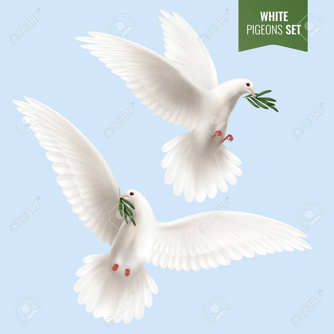 White Dove Set With Peace And Olive Branch Symbols Realistic Royalty Free Cliparts Vectors And Stock Illustration Image 108938336
