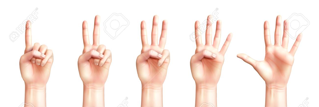 Realistic people hands counting from one to five isolated on white background vector illustration - 128160757
