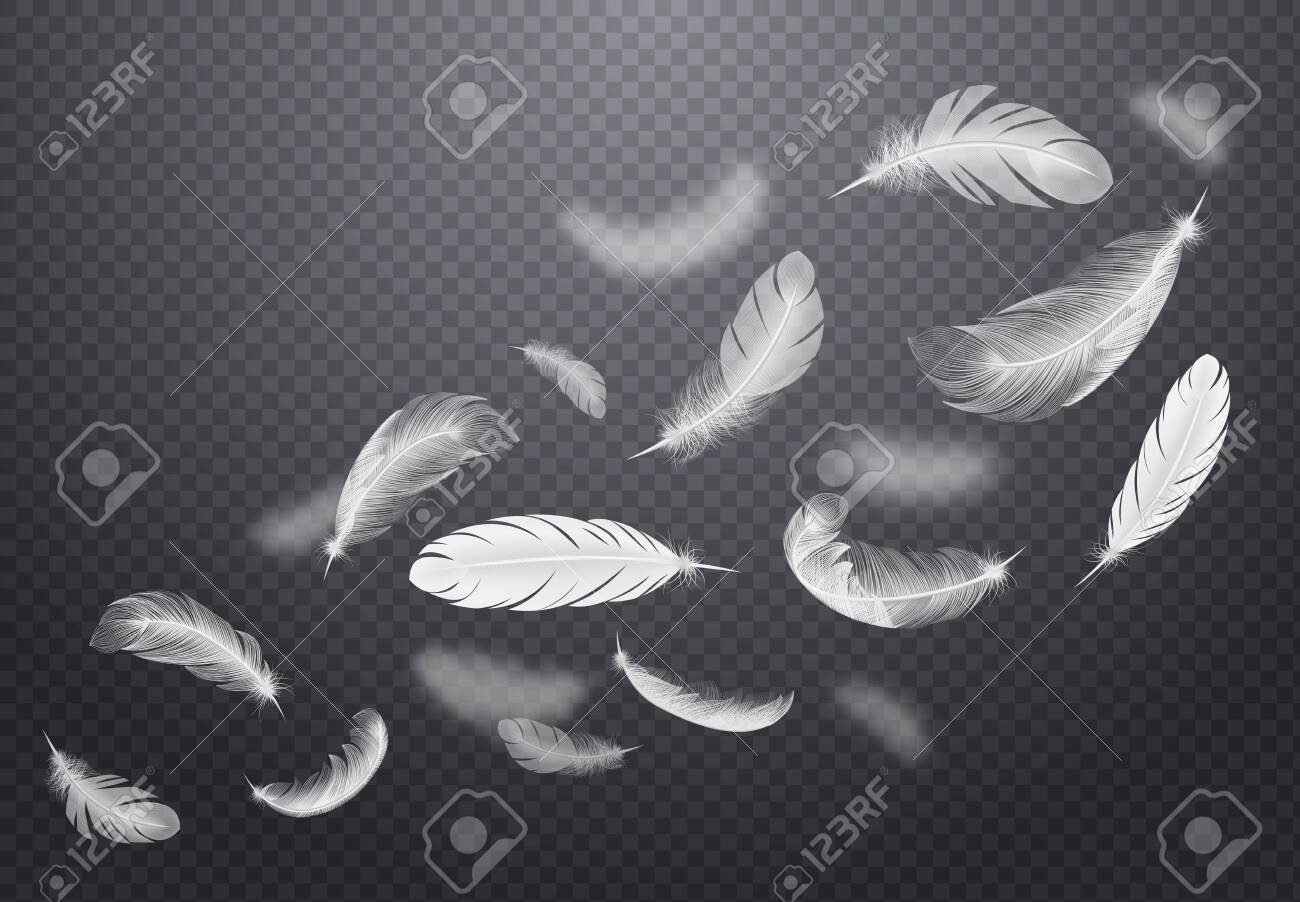 Set of white falling bird feathers on dark transparent background in realistic style vector illustration - 127210993