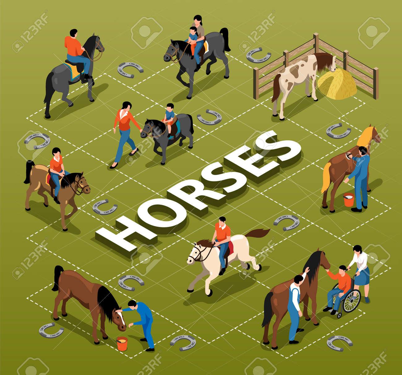 Horses Isometric Flowchart - 171721575