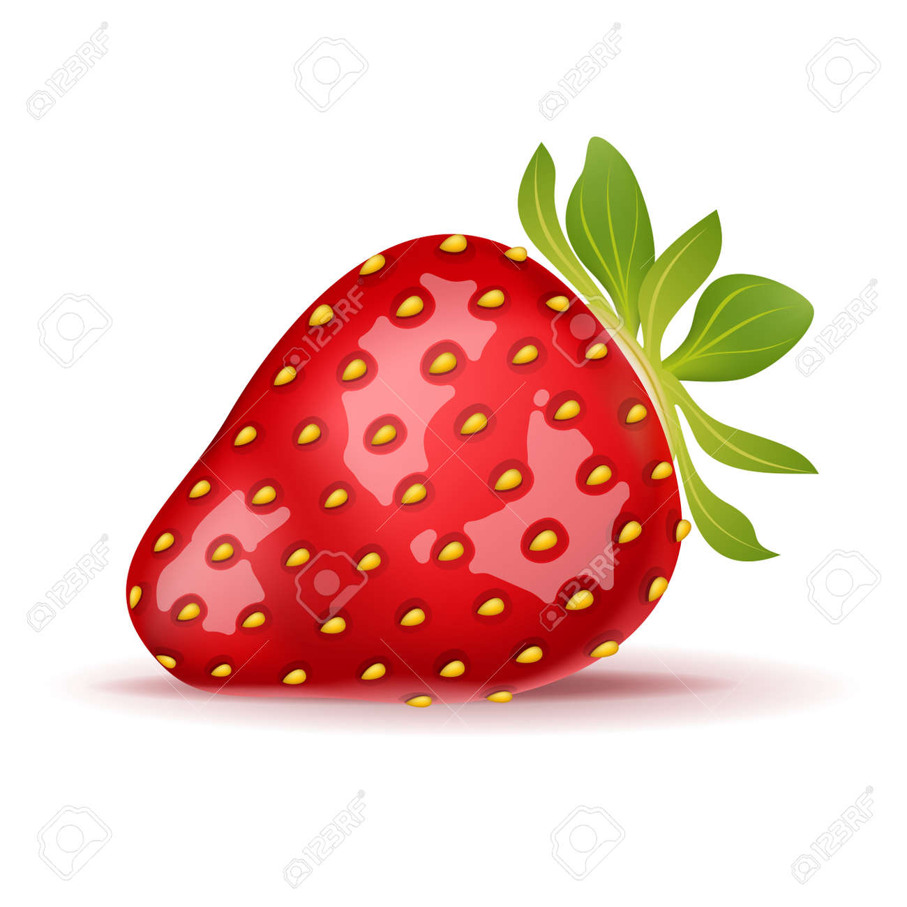 Ripe strawberry isolated on white. Vector illustration. - 167011051