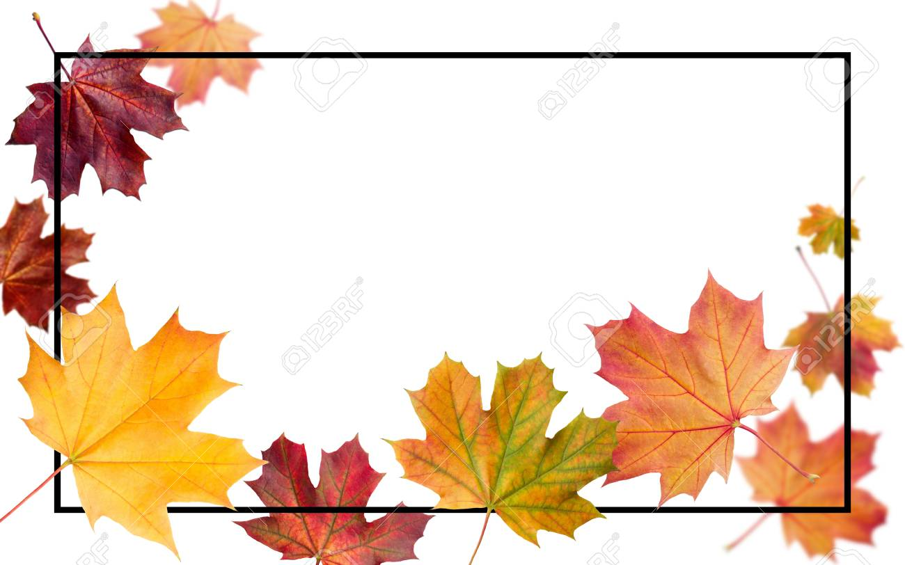Autumn falling leaves. Autumnal foliage fall and poplar leaf flying in wind motion blur. Autumn design. Templates for placards, banners, flyers, presentations, reports. - 110302786
