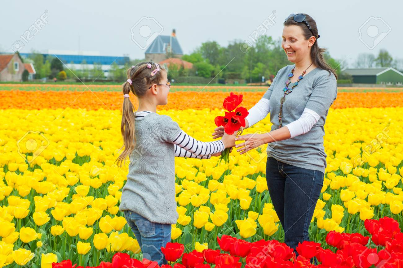 Girl and her mother with bouquet between of the yellow-red tulips field Stock Photo - 17860710