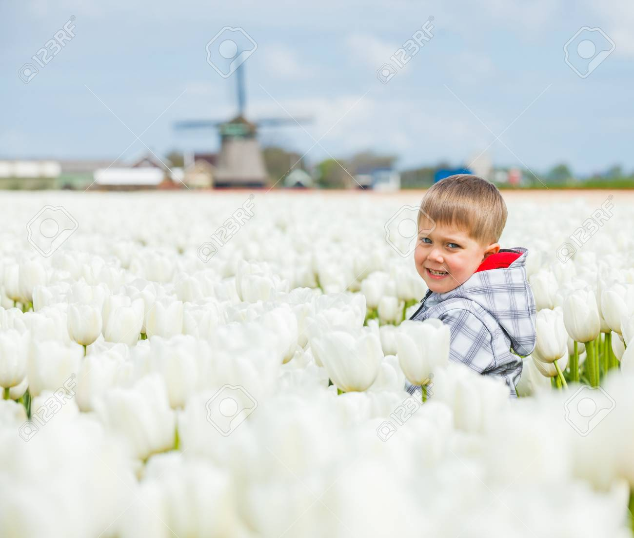 Cute Boy between of the white tulips field Stock Photo - 17887192