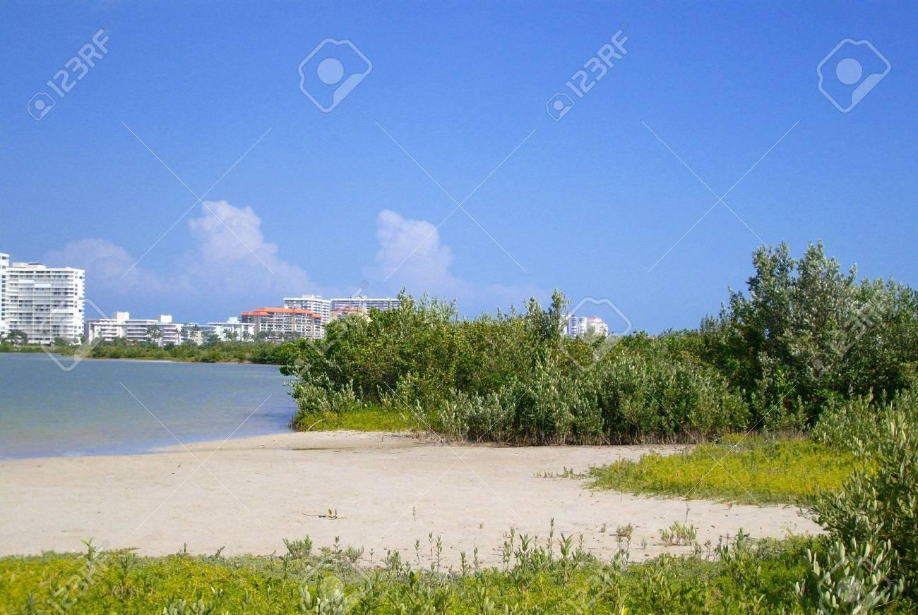 Pequena Playa En La Isla De Marcos Island En La Florida Stock Photo ...
