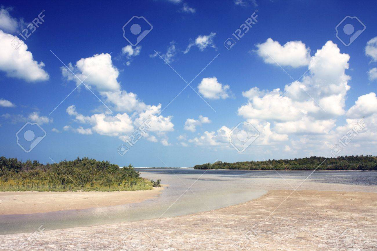 View a beach on Marco Island, located on the west coast of Florida in the Gulf of Mexico. Place known for its tourist attractions. - 4870234