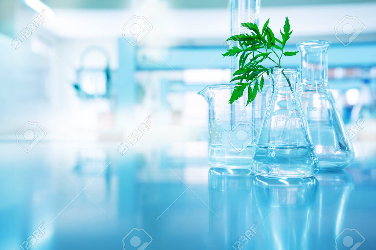 green leave in biotechnology science research laboratory with flask beaker cylinder and water in blue technology background - 116056066