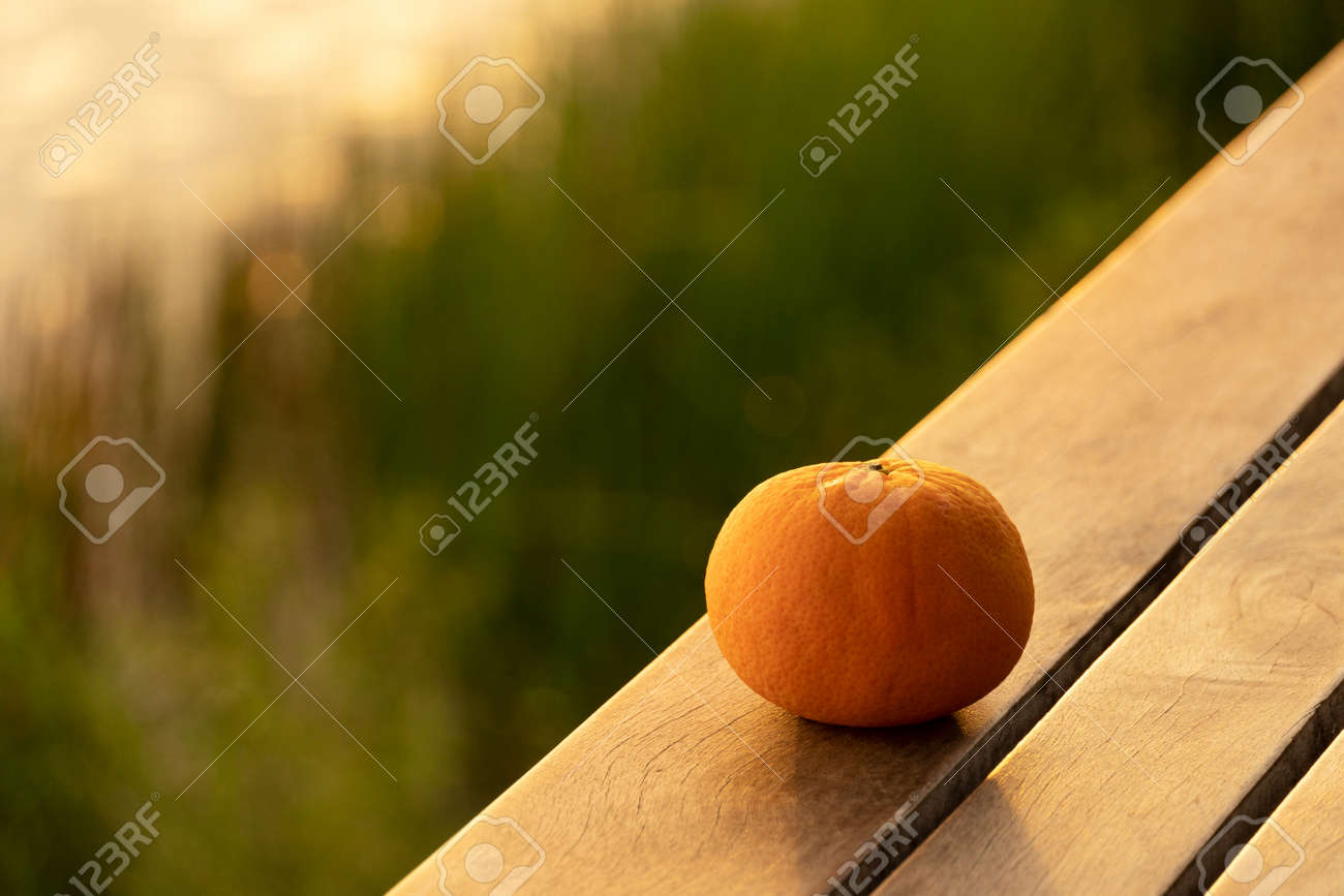 single orange fruit still life on wood floor at natural green meadow water sunset light - 173777035