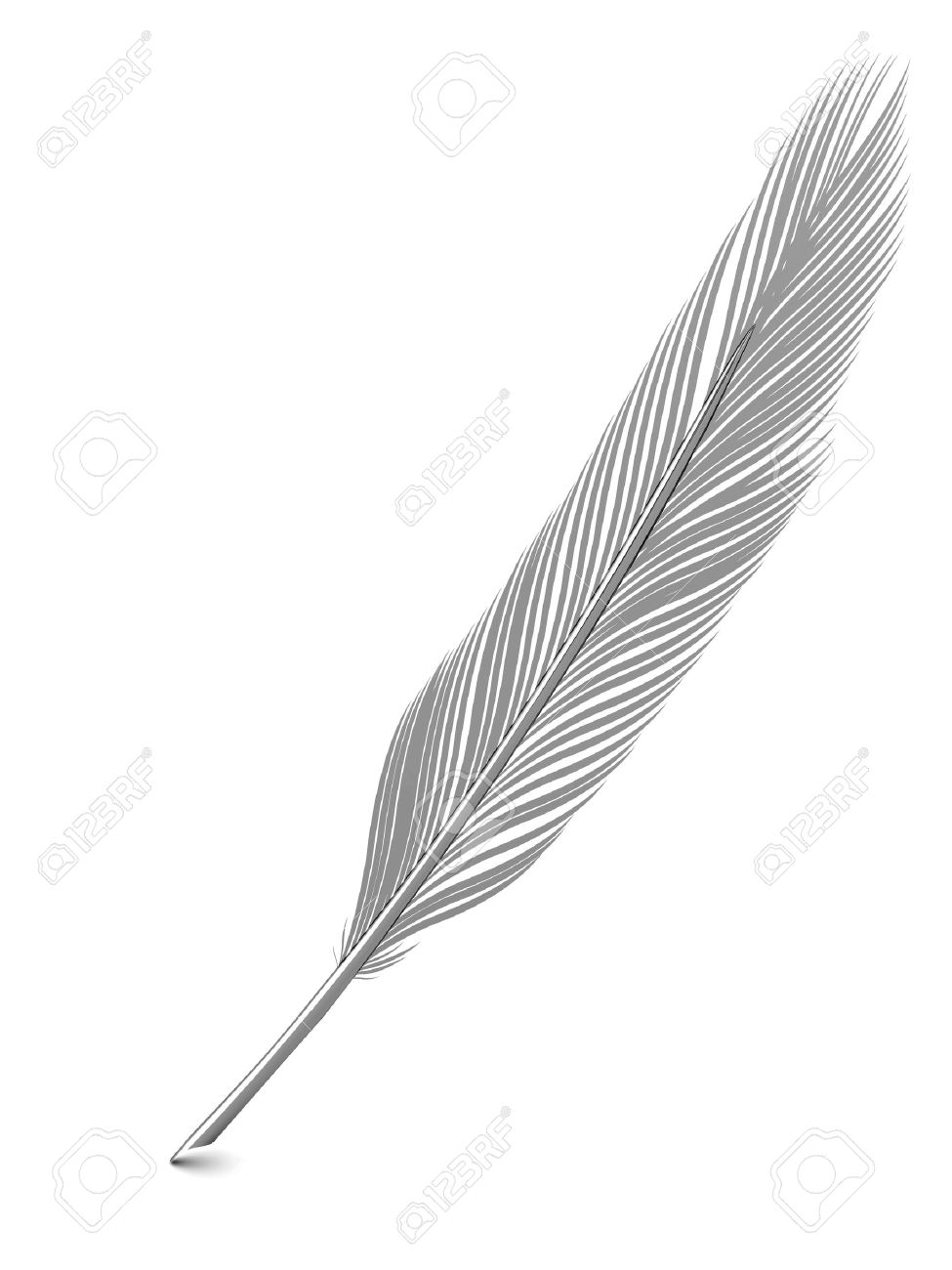 Silver Or Platinum Feather Quill Over White Background. High ...