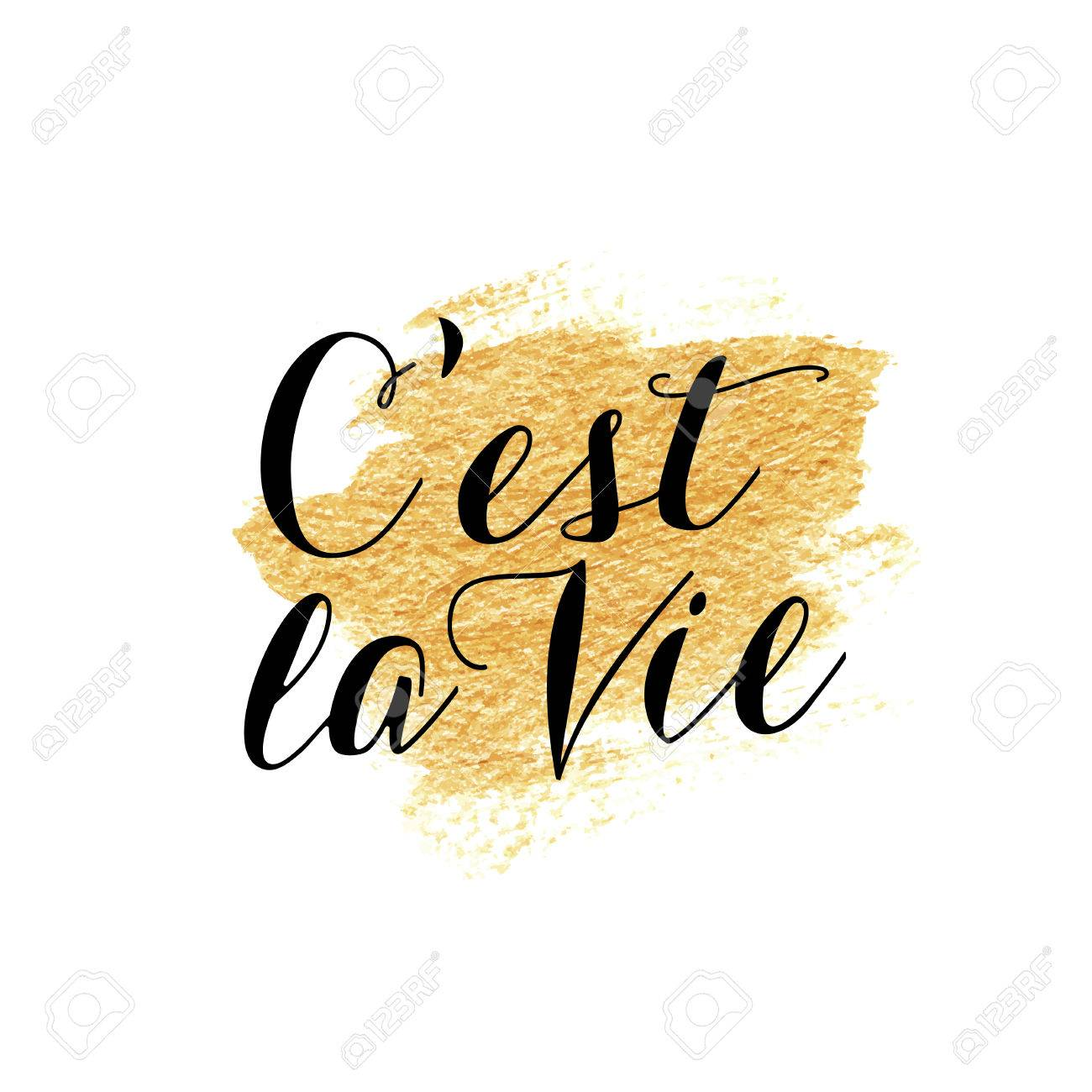C Est La Vie French Hand Lettering Handmade Calligraphy Translation