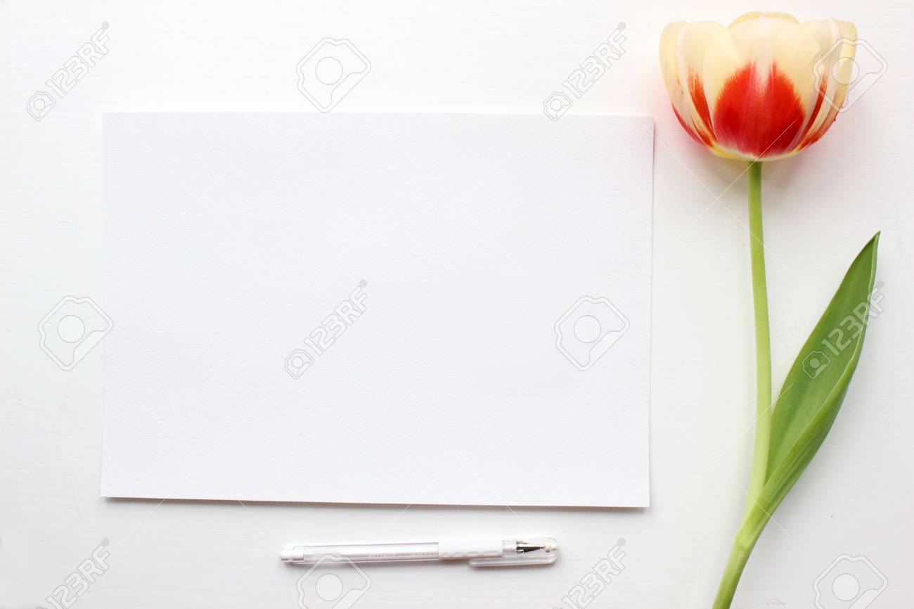 tulip mockup post blog social media top view with blank paper