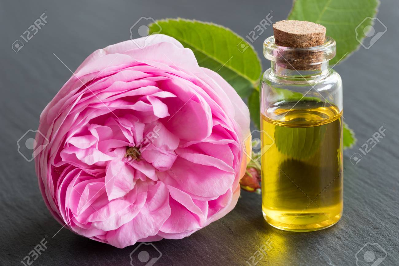 Rose essential oil: a bottle of oil with a rose flower on a black background - 80173559