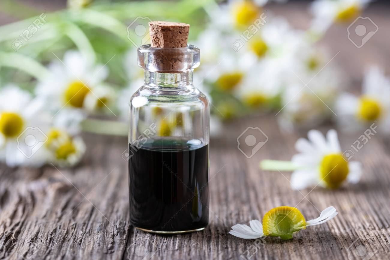 A Bottle Of Dark Blue German Chamomile Essential Oil With A Fresh Stock Photo Picture And Royalty Free Image Image 124625408