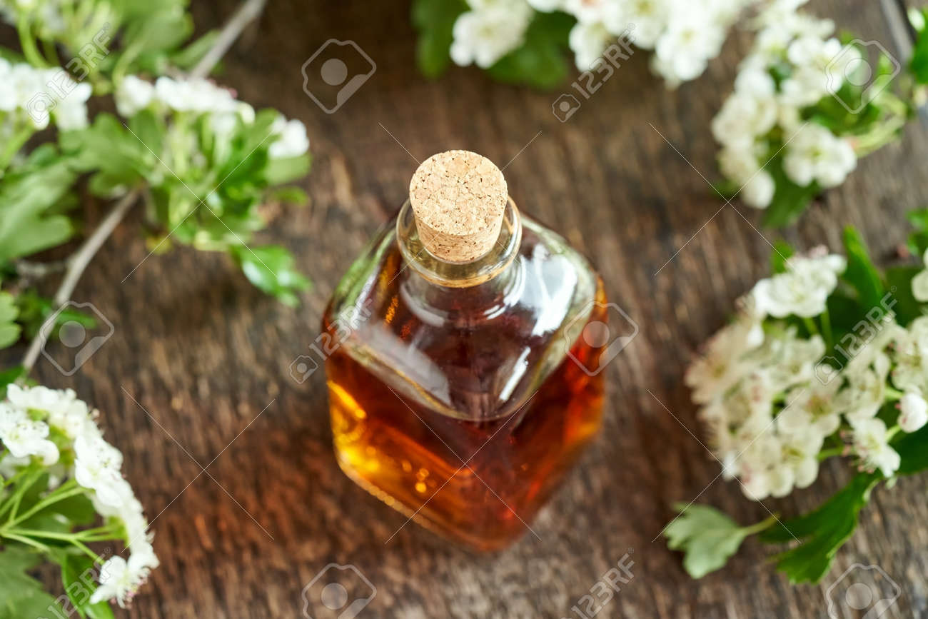 A bottle of herbal tincture with hawthorn flowers and leaves in spring - 169337974