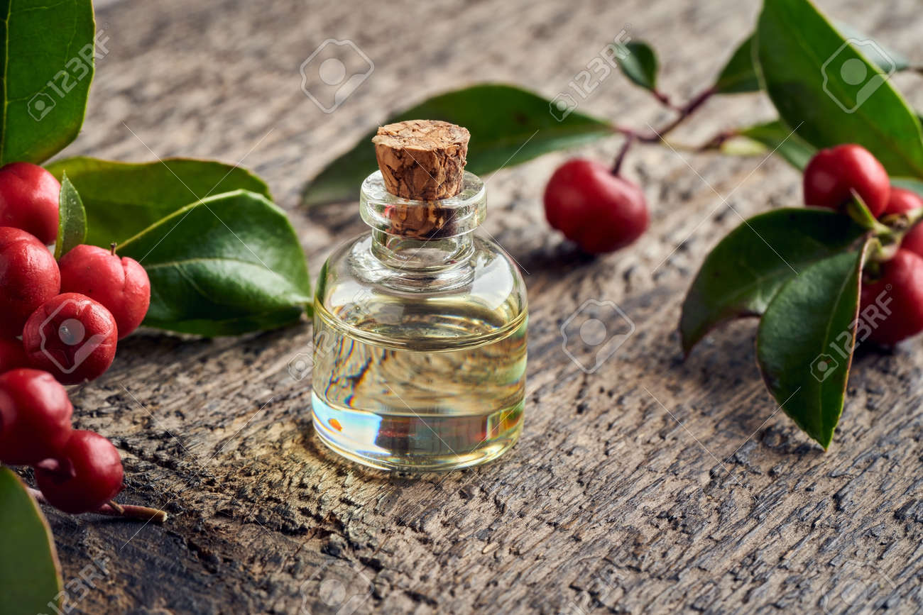 A bottle of essential oil with wintergreen leaves and berries on a wooden table - 169337980