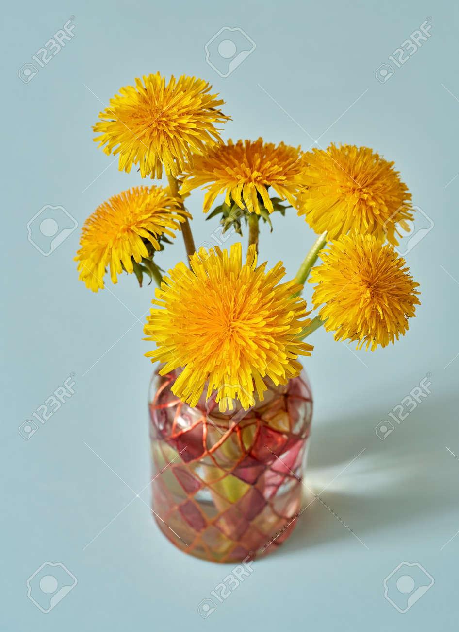 Fresh dandelion flowers in a vase on blue pastel background - 169337994