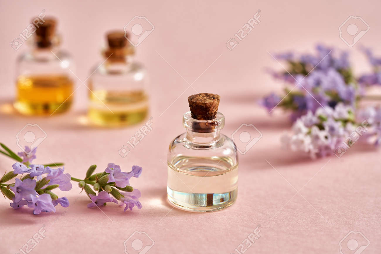 A bottle of essential oil with fresh blooming lavender on pastel pink background. Aromatherapy or alternative medicine concept. - 169337996