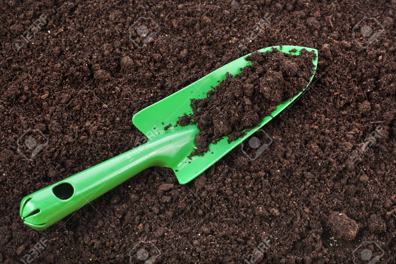 Close up of organic soil surface background and green gardening tool Stock Photo - 21061309