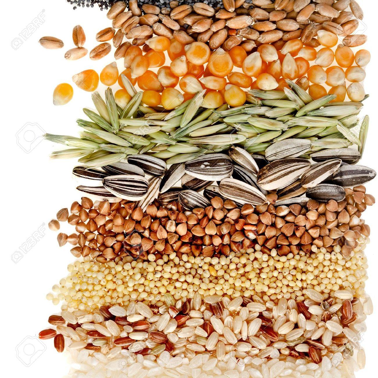 Поделки из зерна своими руками кофе, пшено, рис