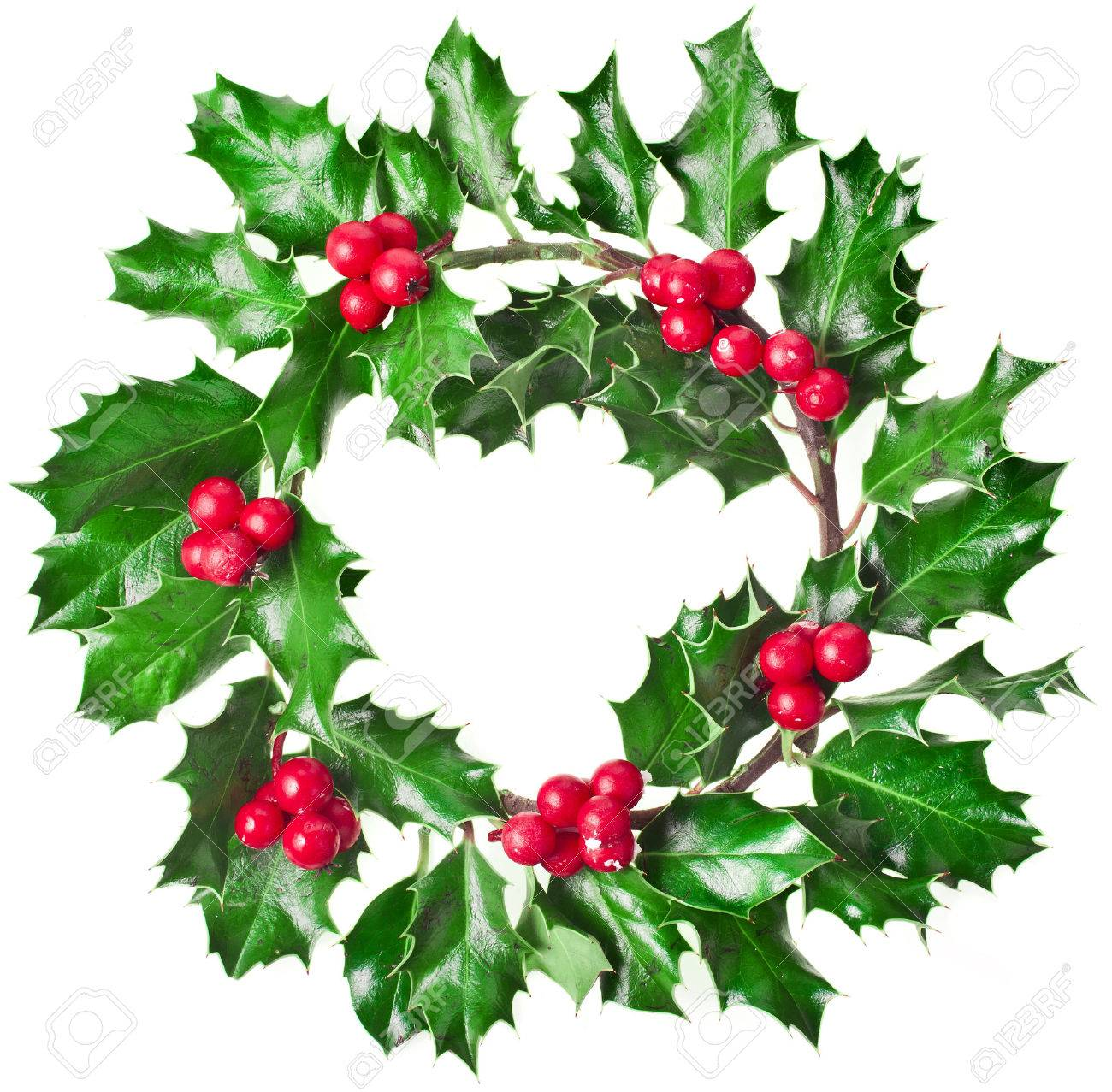 Christmas Holly Tree Part - 36: Christmas Decoration Wreath Of Fresh Berries And Leaves Holly Tree Isolated  On White Background Stock Photo