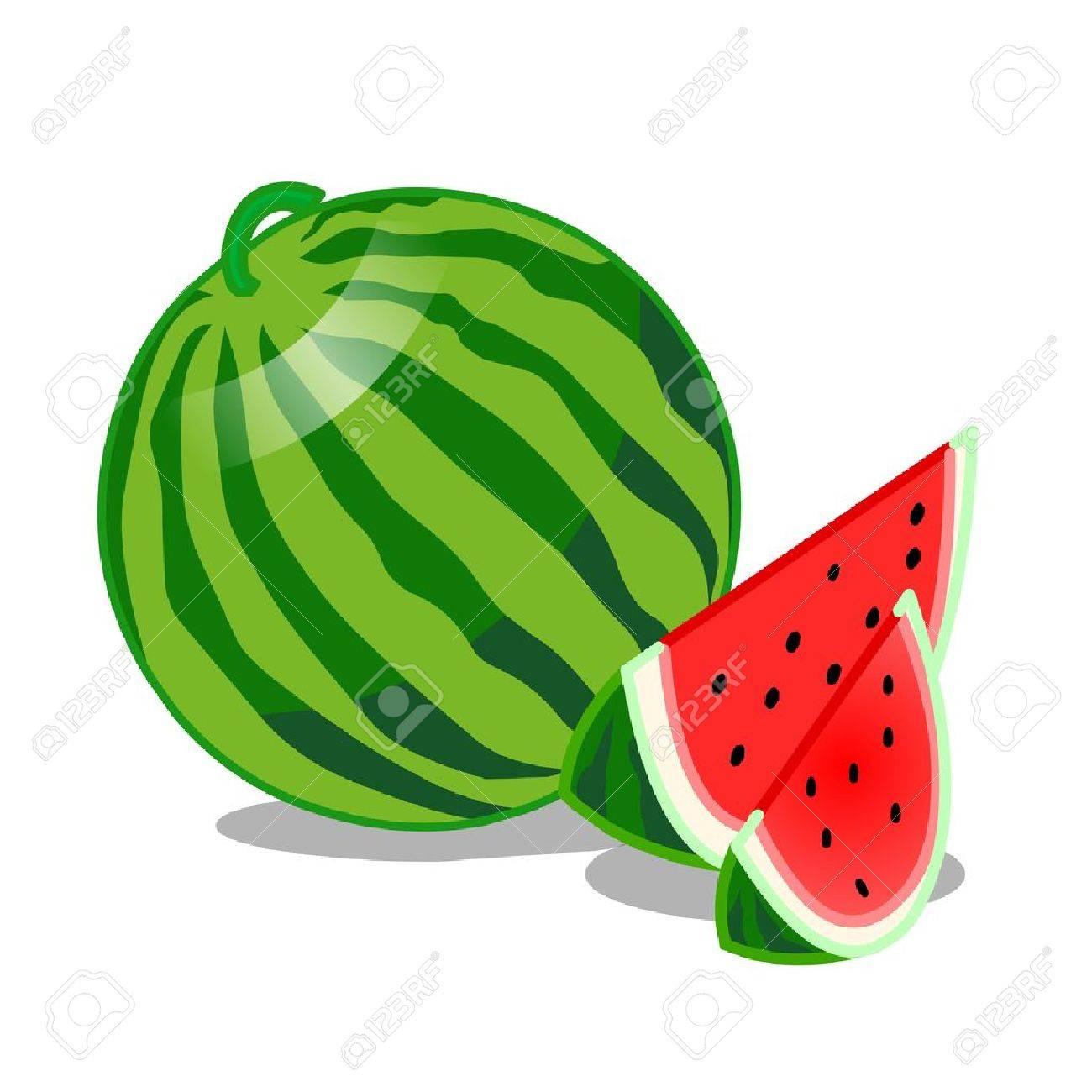 Watermelon Fruit isolated illustration on white background Stock Vector - 22156467