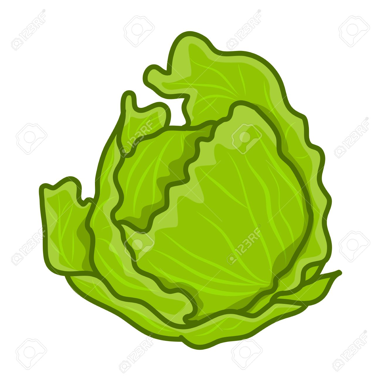 Image result for cabbage cartoon